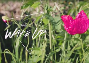 Ravelo Wake Up - Marcha FM
